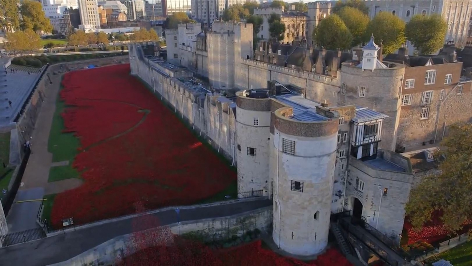 Tower of London Poppies Seen From Above in Drone Video