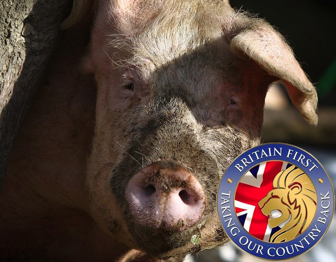 Britain First in zany new plot to halt mosque in Dudley by burying dead pig