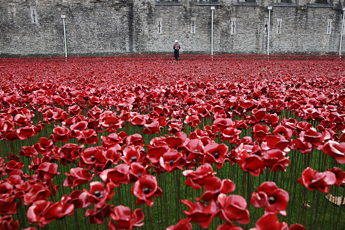 photos of armistice day 2014 events around britain and france