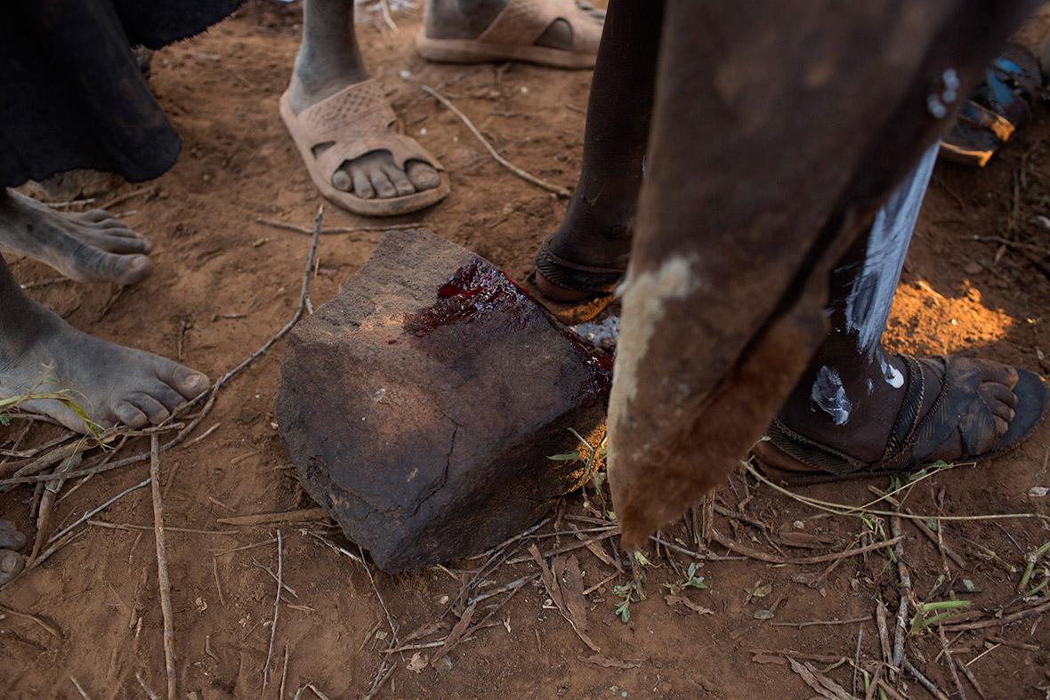 mutilation Female genital