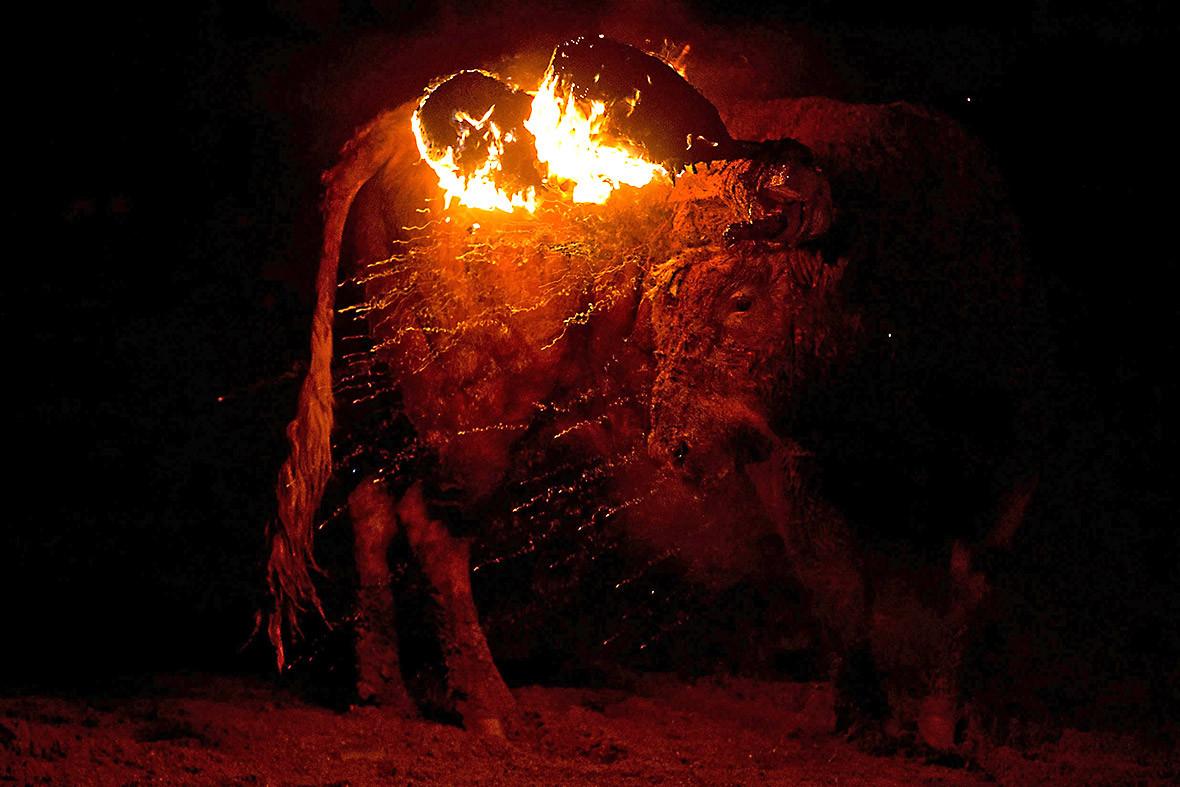 Toro de Jubilo