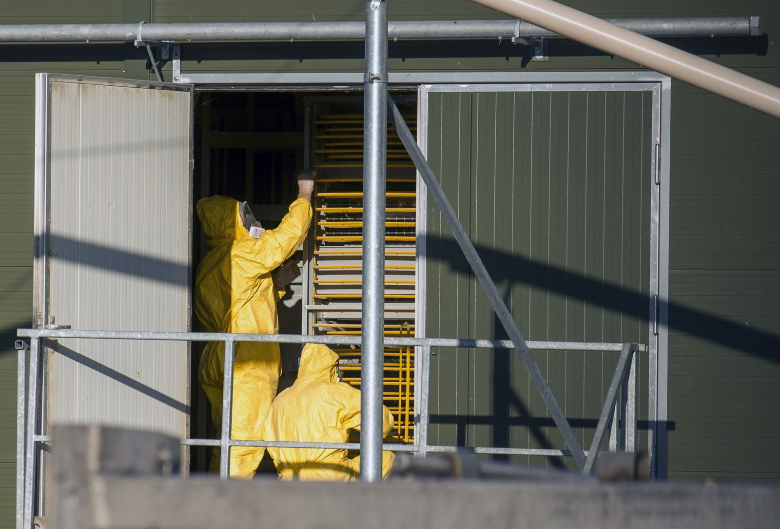 Officials in protective clothing at the farm in Hekendorp, Netherlands, where bird flu has been detected. (Reuters)