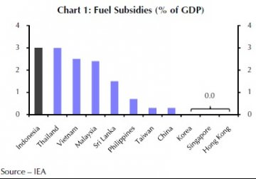 Fuel subsidies in the world