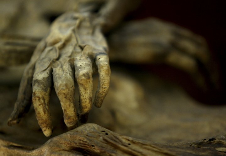 The hands of a mummy in a Mexican museum. According to the reports the old woman had been kept so long her remains had mummified. (Reuters)