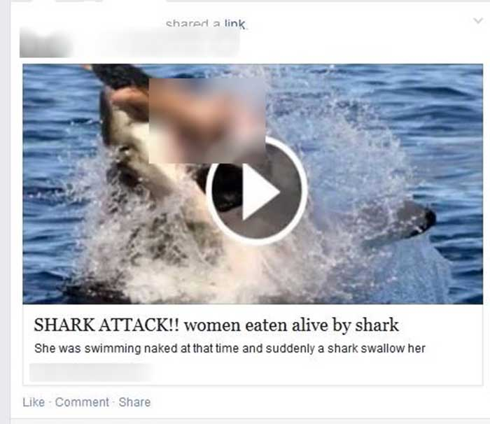 Naked Woman Eaten by Shark Video Scam Facebook Spreads Malware,