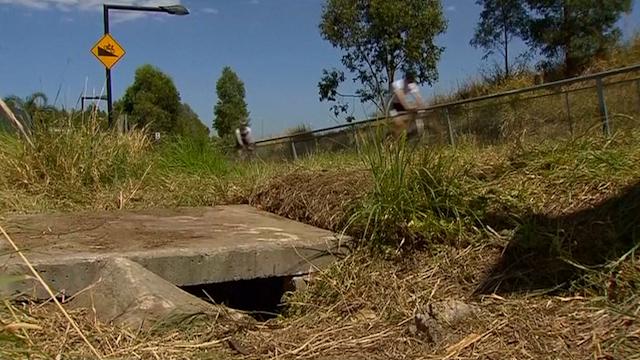 Newborn Baby Boy Found Alive in Drain in Australia