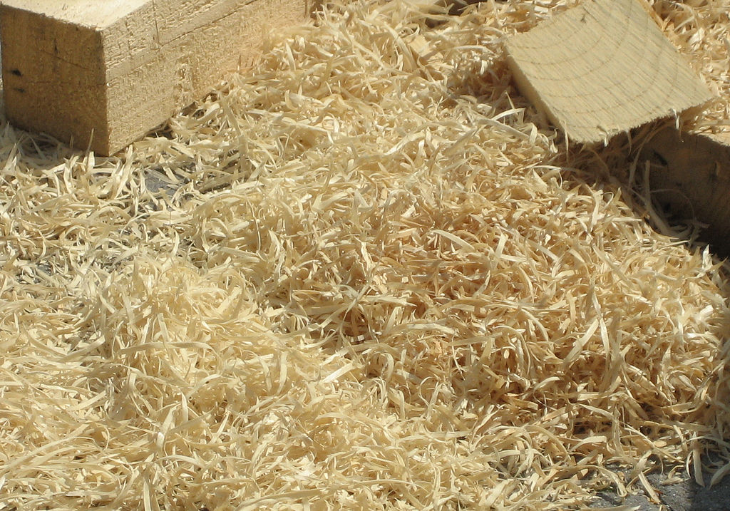 Cellulose can be obtained easily from wood pulp, straw, grass and cotton. By refining petrol from plant waste, the process is environmentally friendly
