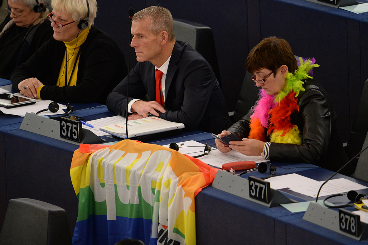 pope european parliament gay