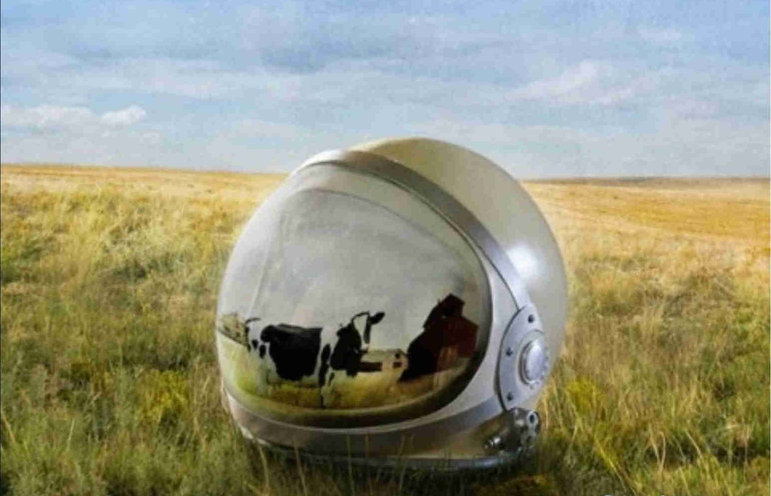 spacex farmer job astronaut