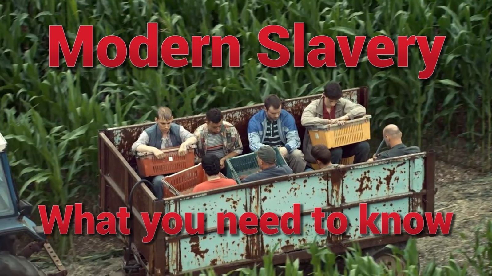 Modern slavery – what you need to know