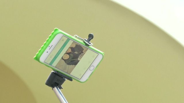 Selfie-stick sellers face fines or jail time in South Korea