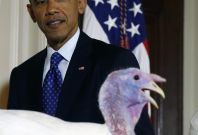 """U.S. President Barack Obama participates in the annual turkey pardoning ceremony of \""""Cheese\"""" marking the 67th presentation of the National Thanksgiving Turkey while in the White House in Washington, November 26, 2014"""