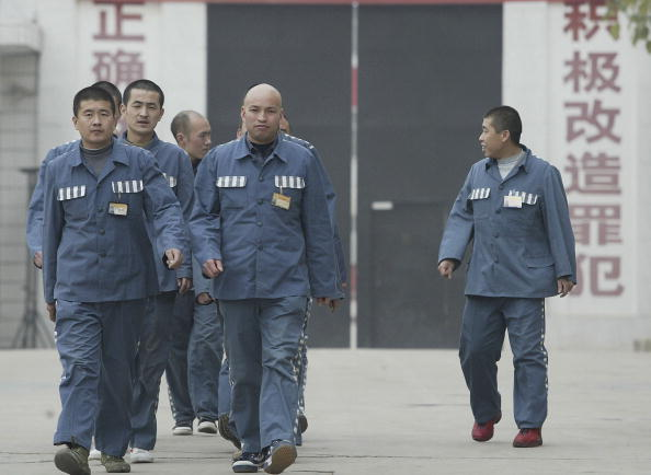 china inmates organ transplant