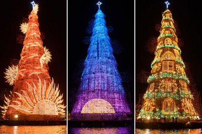 Worlds biggest Christmas tree Rio