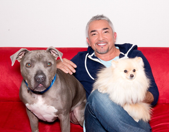 Cesar Millan death hoax: Dog Whisperer did not die from heart attack, denies rumours on Twitter
