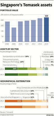 Temasek Holdings' Assets