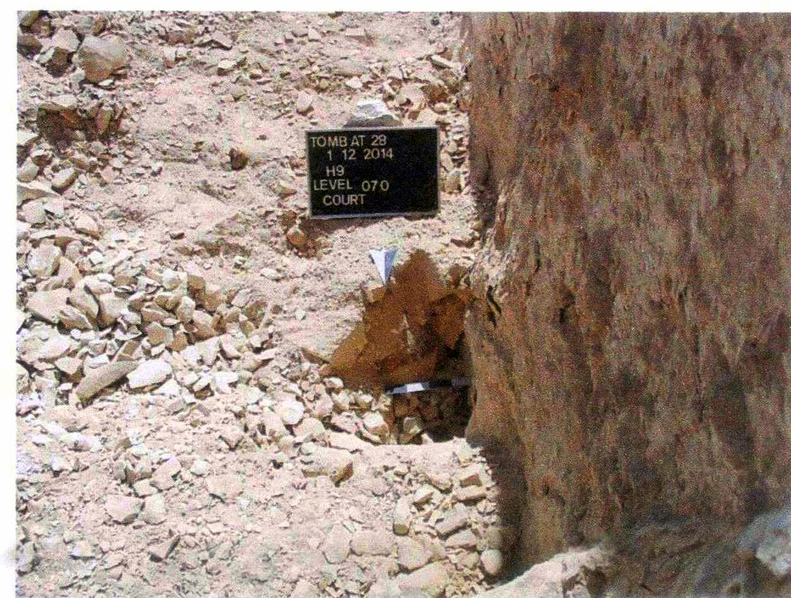 Where the singer of Amun sarcophagus was discovered