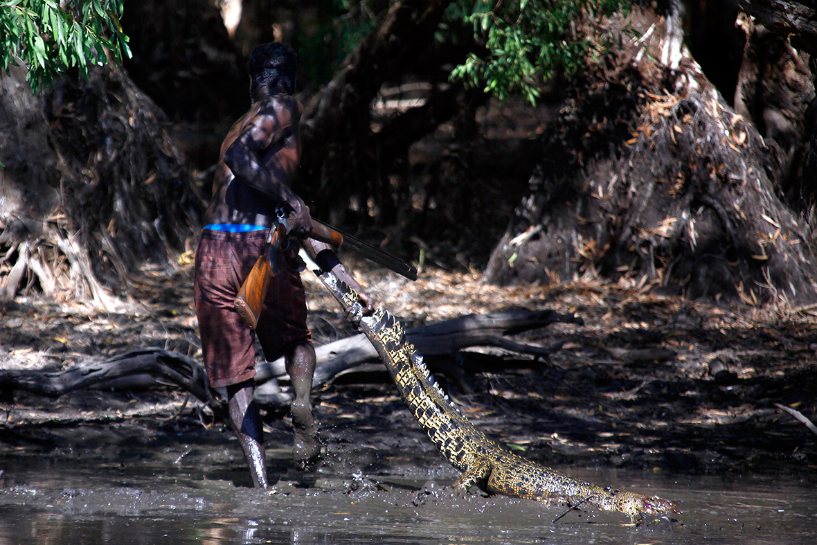 aboriginal crocodile hunters