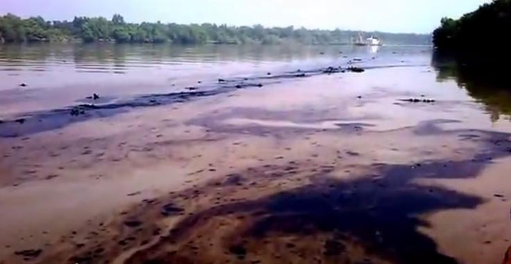 Sundarbans oil spill