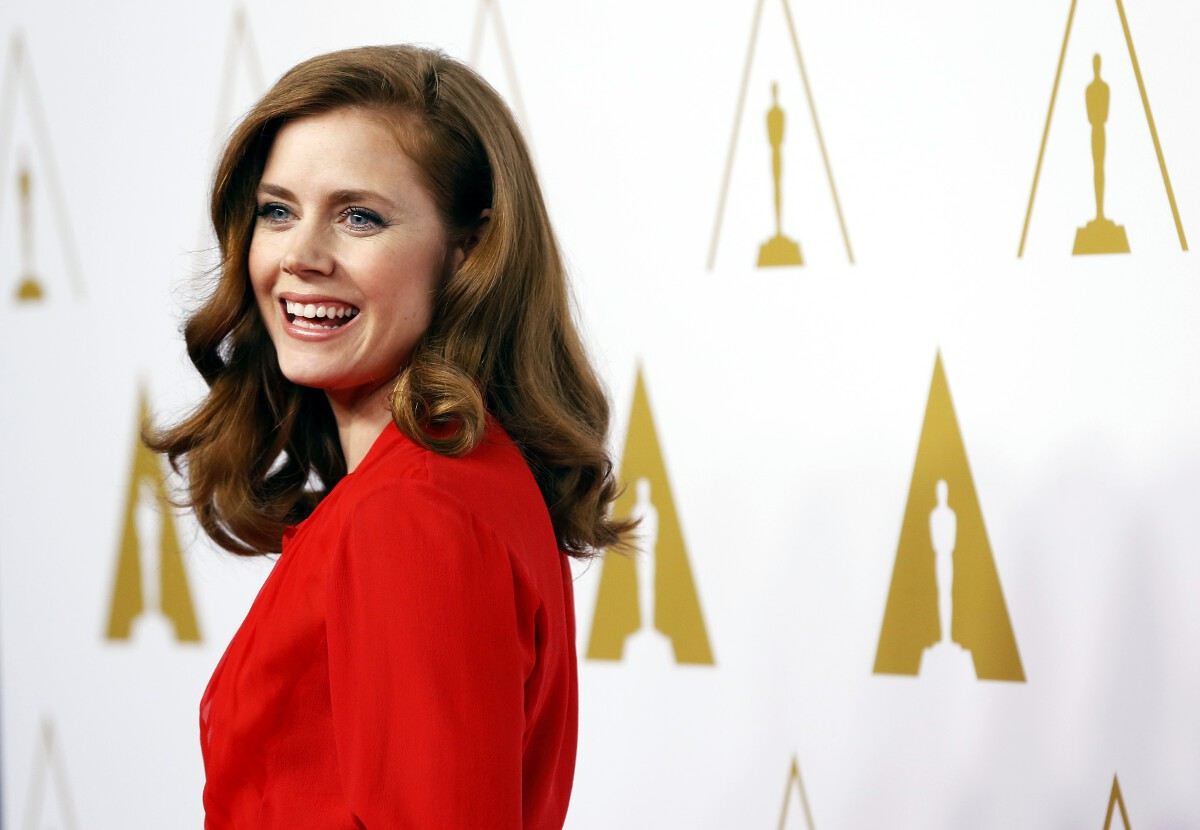 Amy Adams Golden Globes 2015 nominee