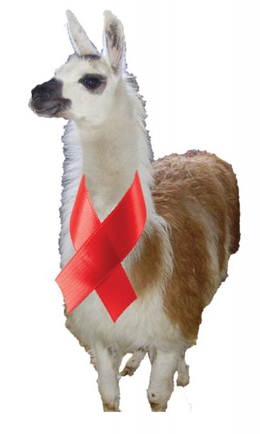 HIV llama
