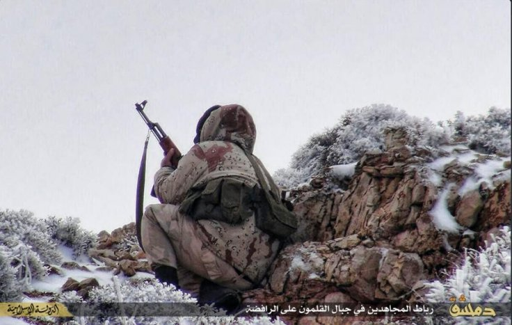 IS fighter waits in snow