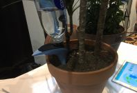 Parrot H20 automates watering your plants