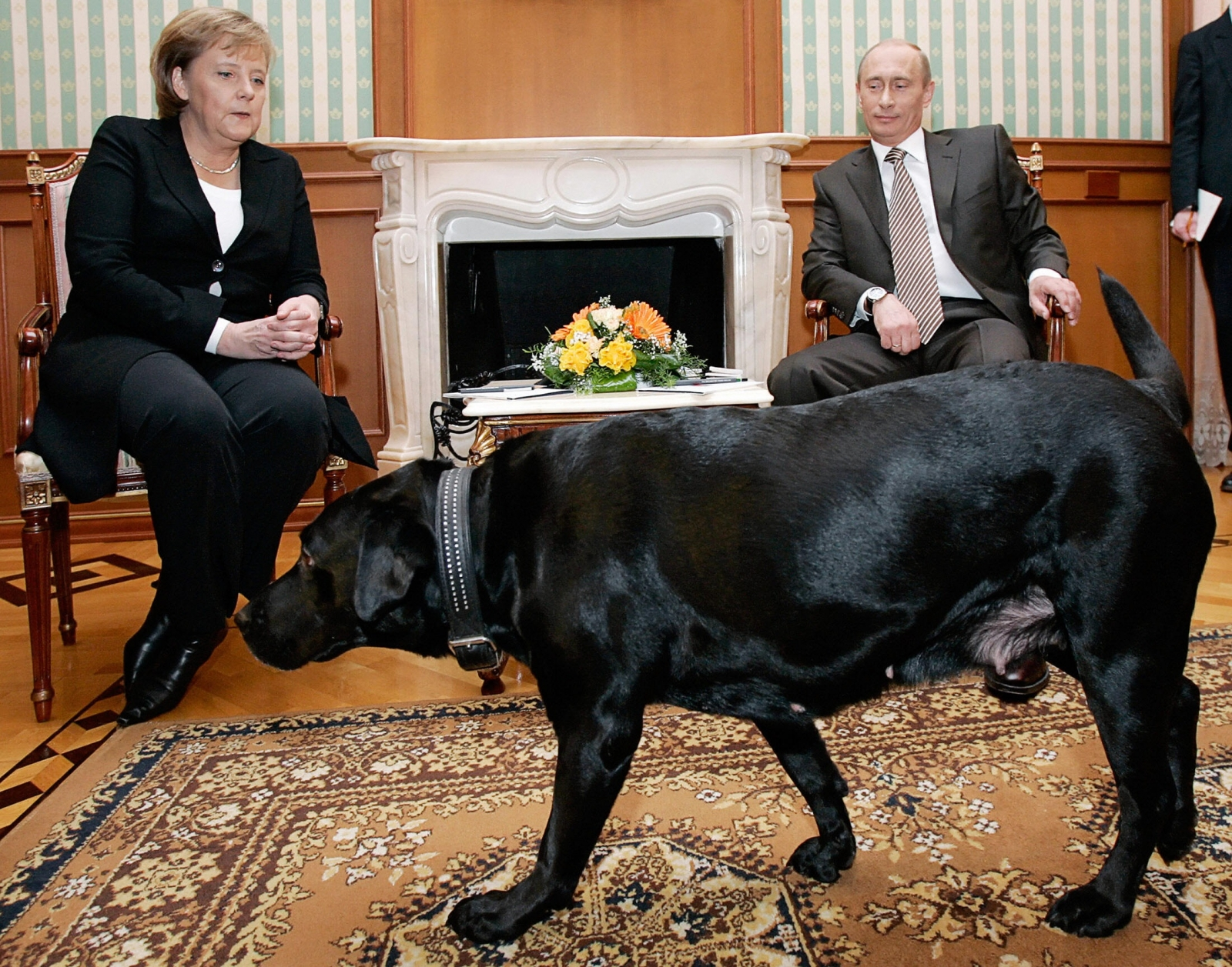 Merkel Putin and a dog