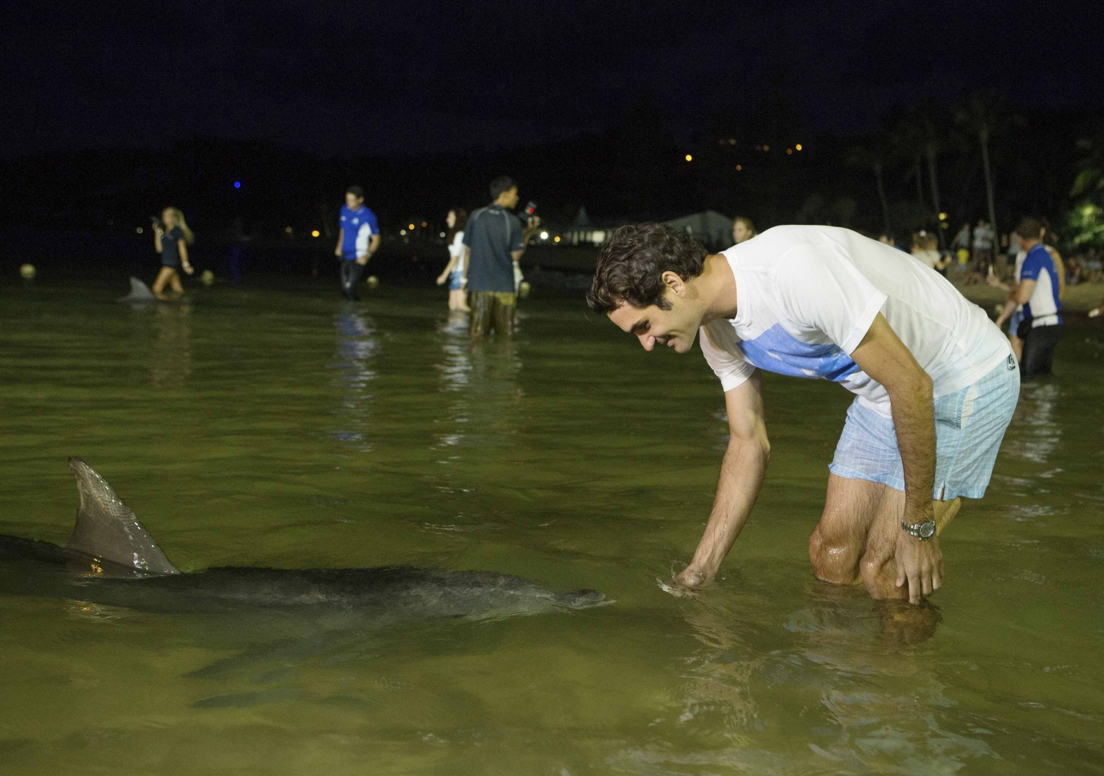 Federer chases dolphins and glory in Australia