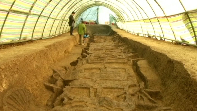 Archaeologists unearth chariot and horse pits in central China