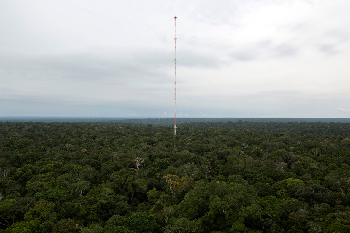 Amazon Tall Tower Observatory