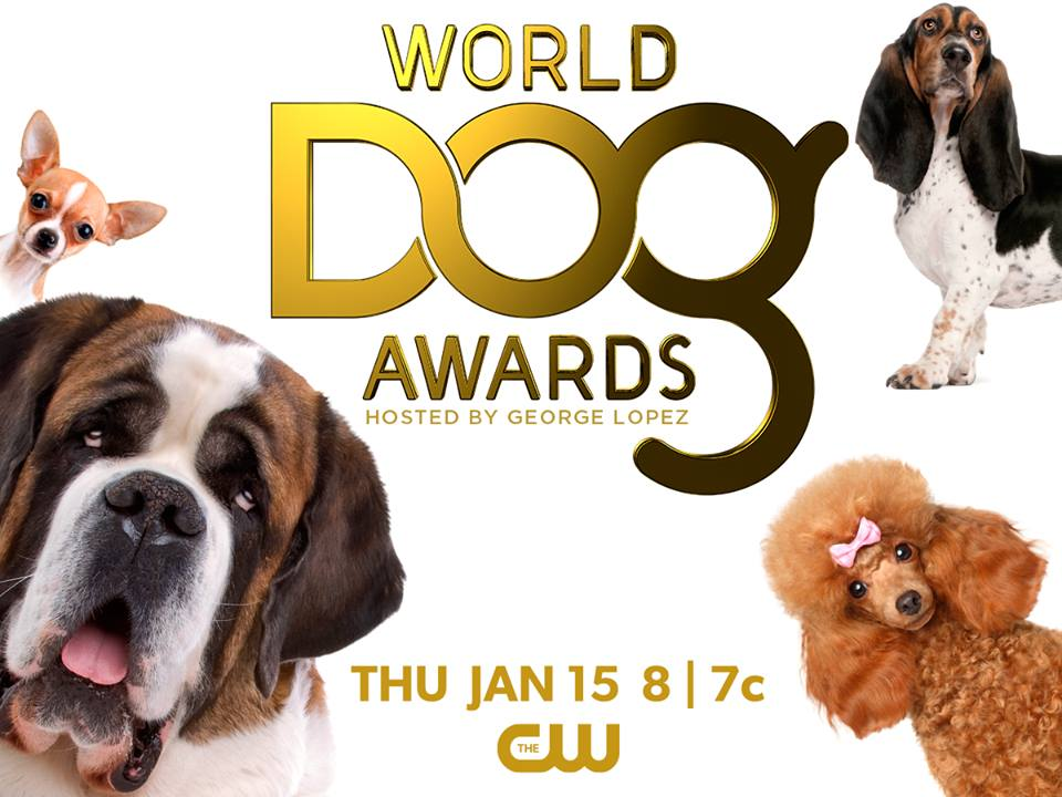 The World Dog Awards