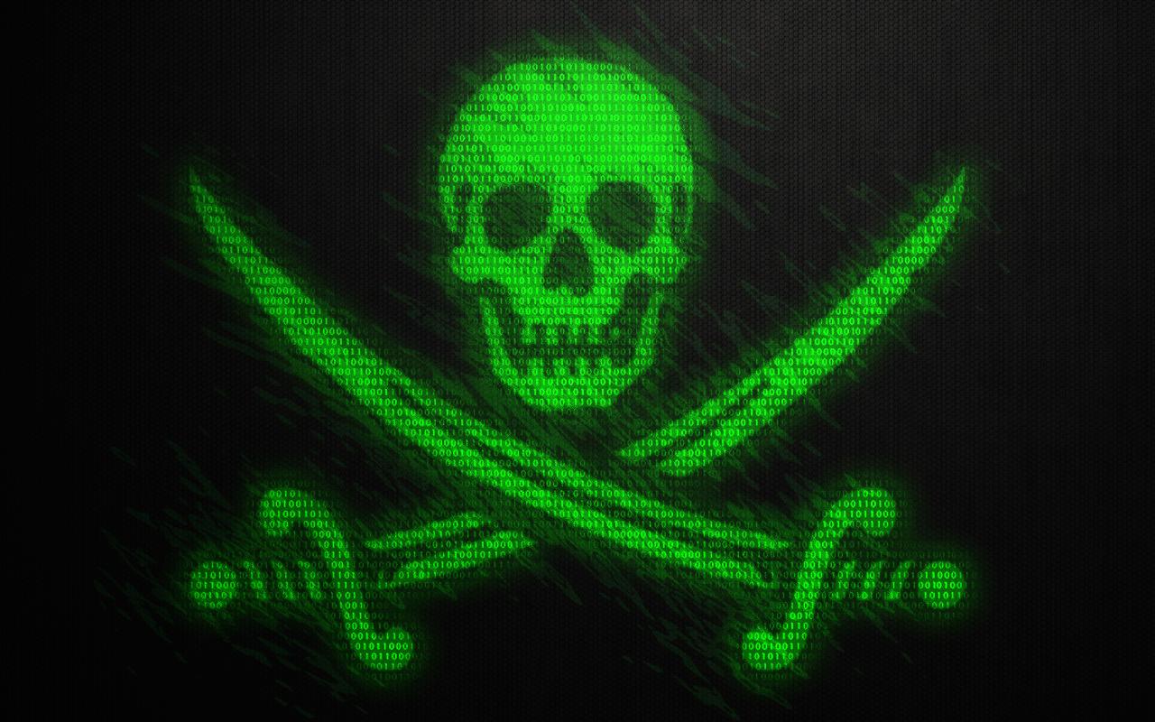 pirate party hack sweden Gustav Nipe