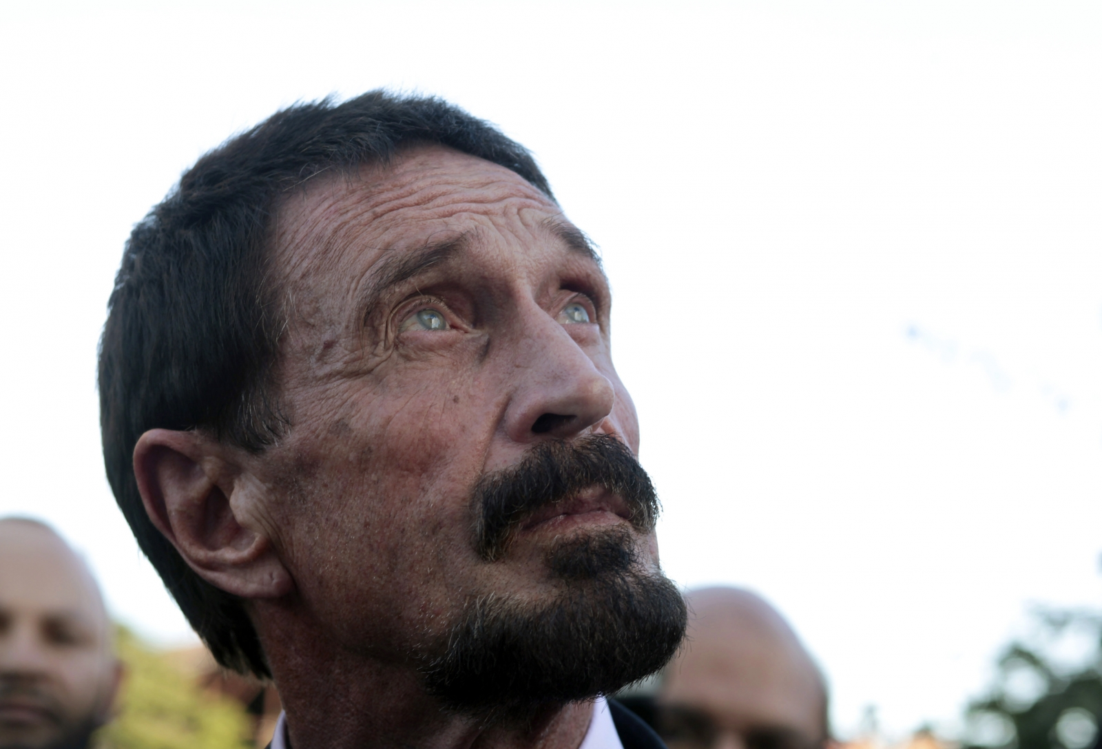 John McAfee arrested for drug driving