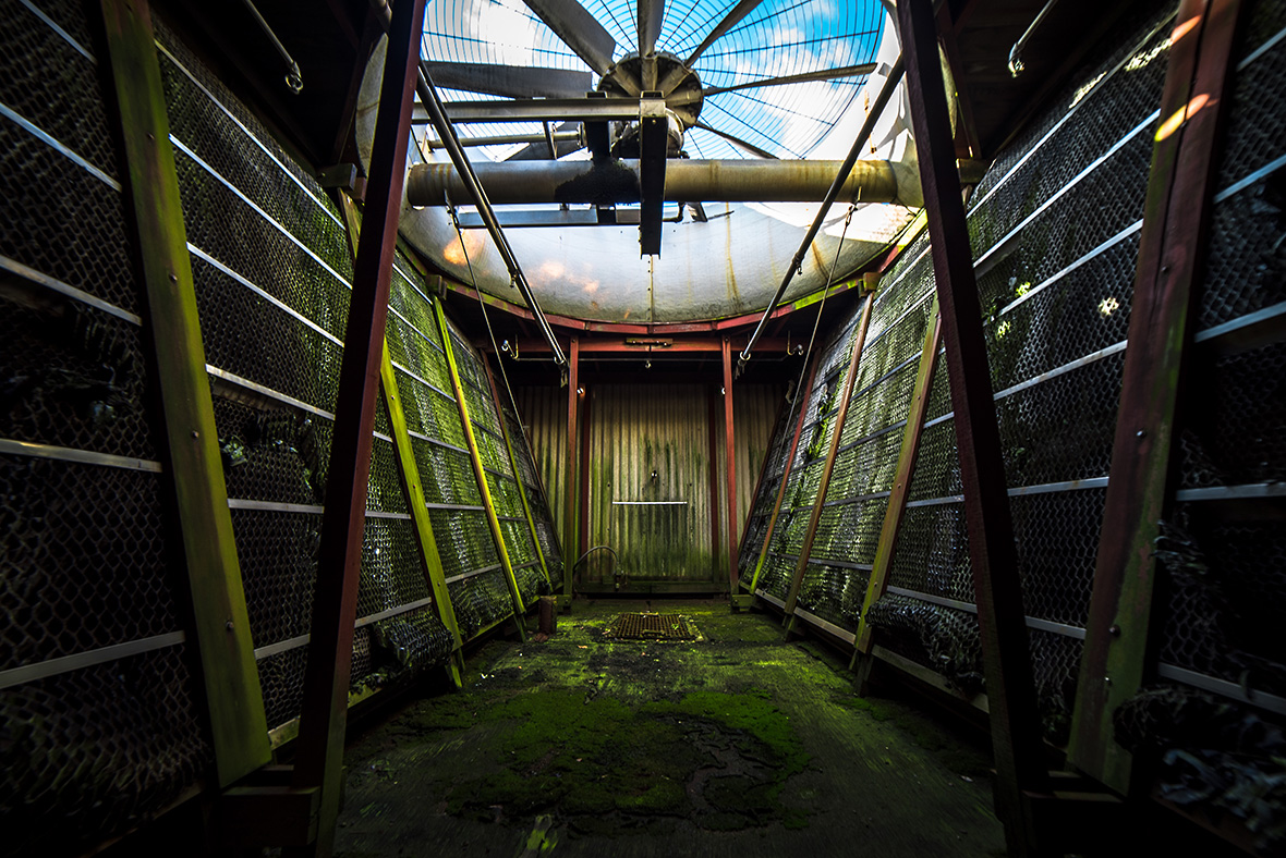Empty Spaces, Abandoned Places, Johnny Joo, UrbexUS