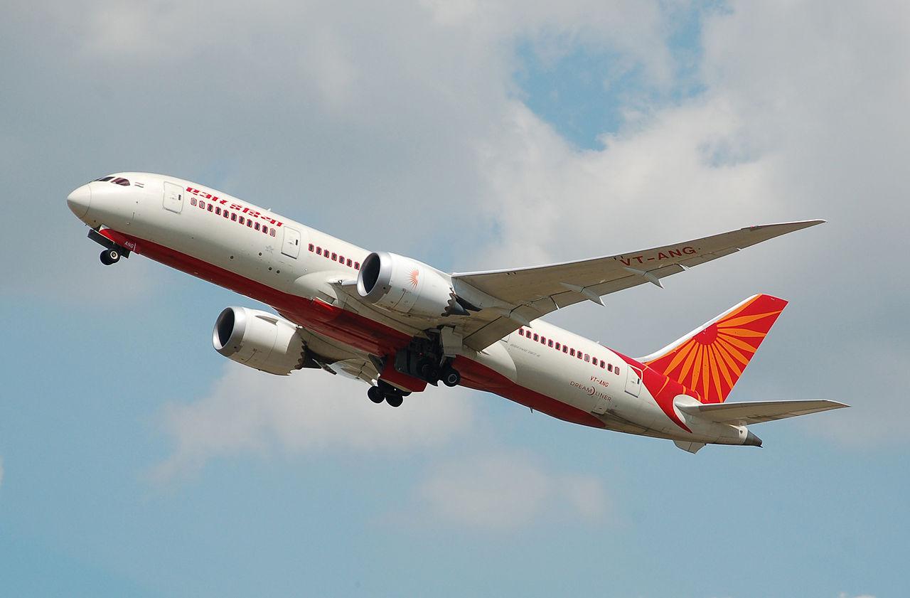 Air India lizard