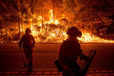 2014 hottest year