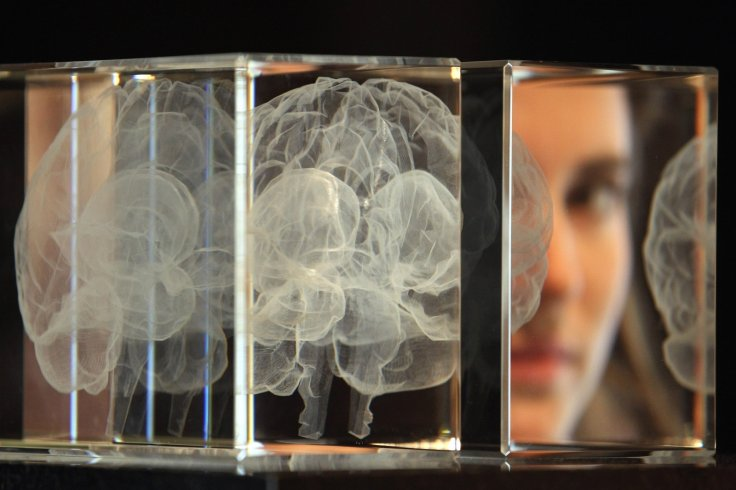 Artwork entitled 'My Soul' by Katharine Dowson, which consists of a laser etched lead crystal glass formation in the shape of a brain, and was created using the artist's own MRI Scan, at Wellcome Collection