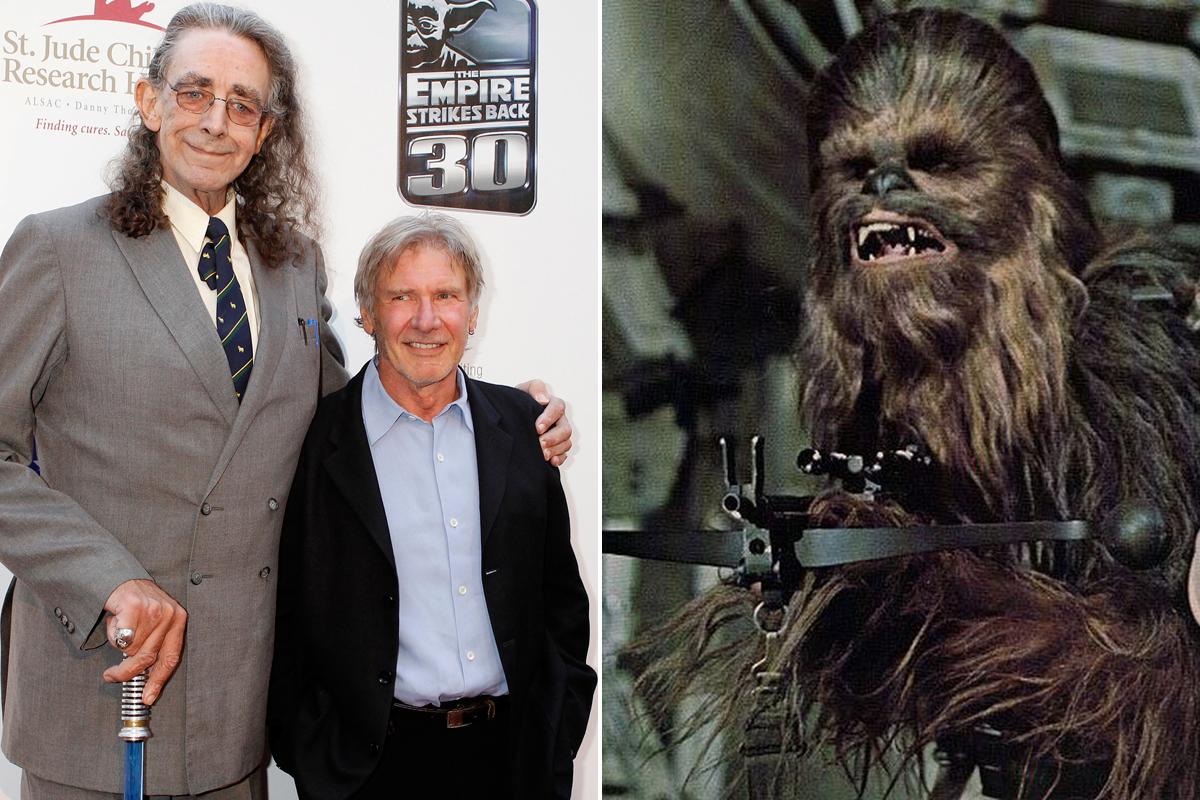 Peter Mayhew Harrison Ford Chewbacca