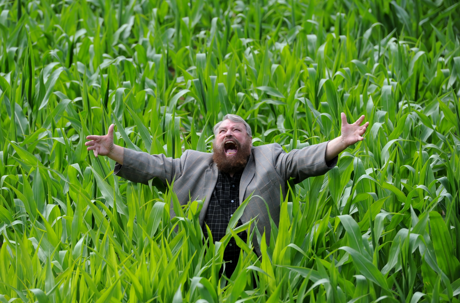Brian Blessed collapsed on stage during King Lear performance at Holy Trinity Church theatre