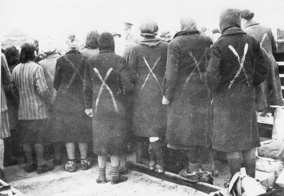 ravensbruck female prisoners