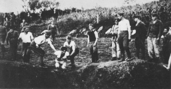 Image result for jasenovac auschwitz of the balkans