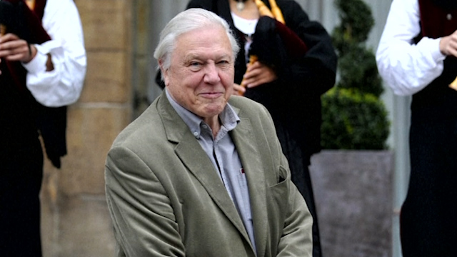 David Attenborough reflects on his career and nature's curiosities