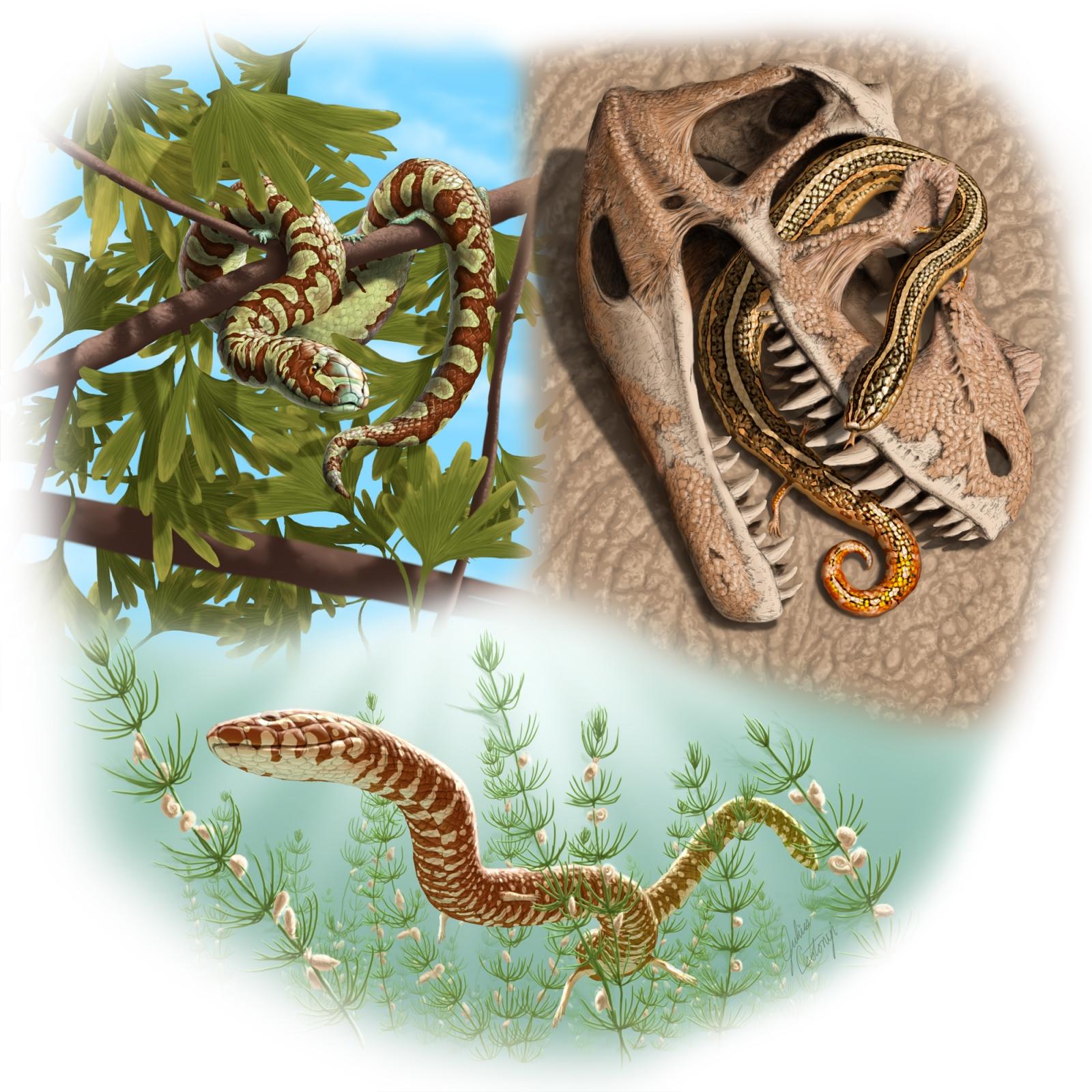 world's oldest snakes