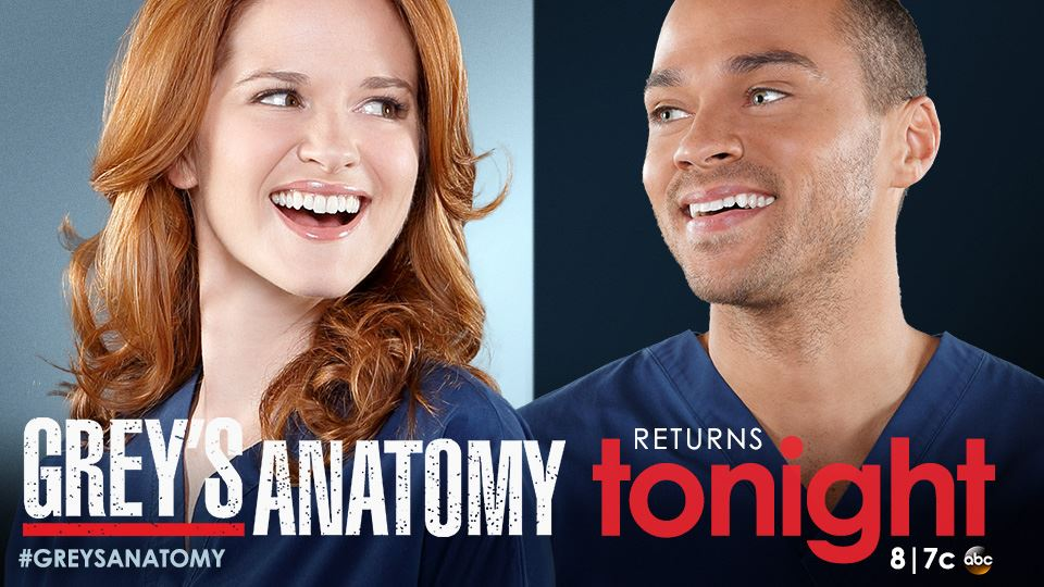 Grey\'s Anatomy season 11 episode 10 synopsis out: Will Jackson and ...