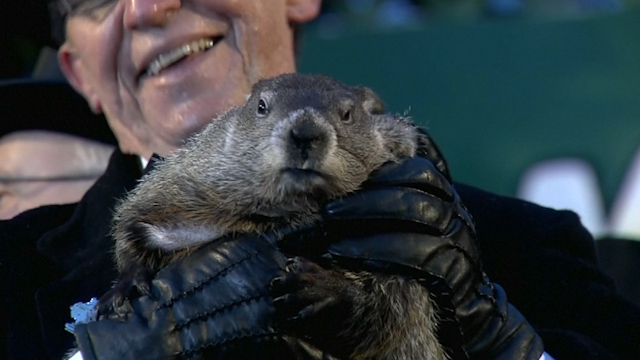 Phil the groundhog predicts six more weeks of winter