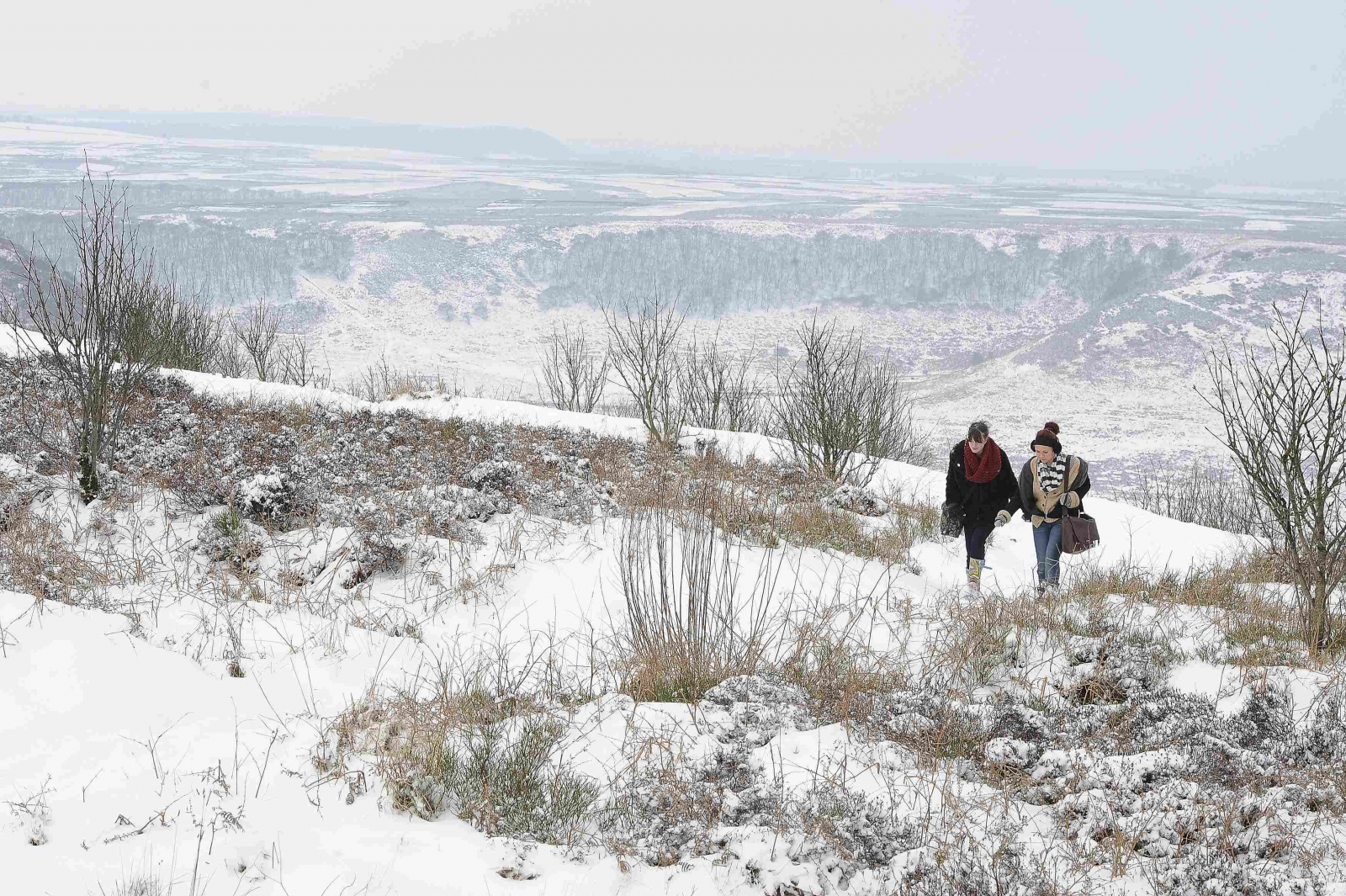 Snow-covered North York Moors near Pickering, northern England