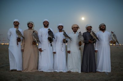 Abu Dhabi falconry