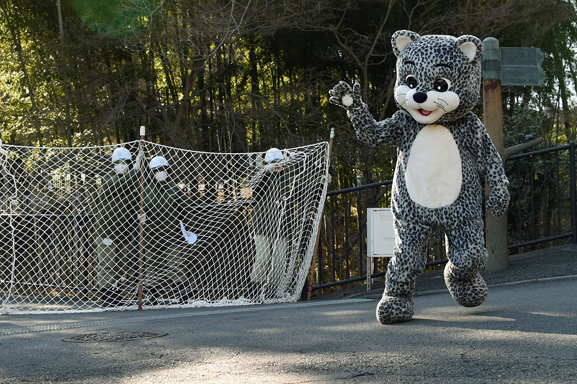 Japan: Tokyo's Tama Zoo stages escaped animal drill with man in snow leopard costume