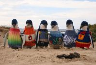 Alfred Date knits sweaters to save penguins